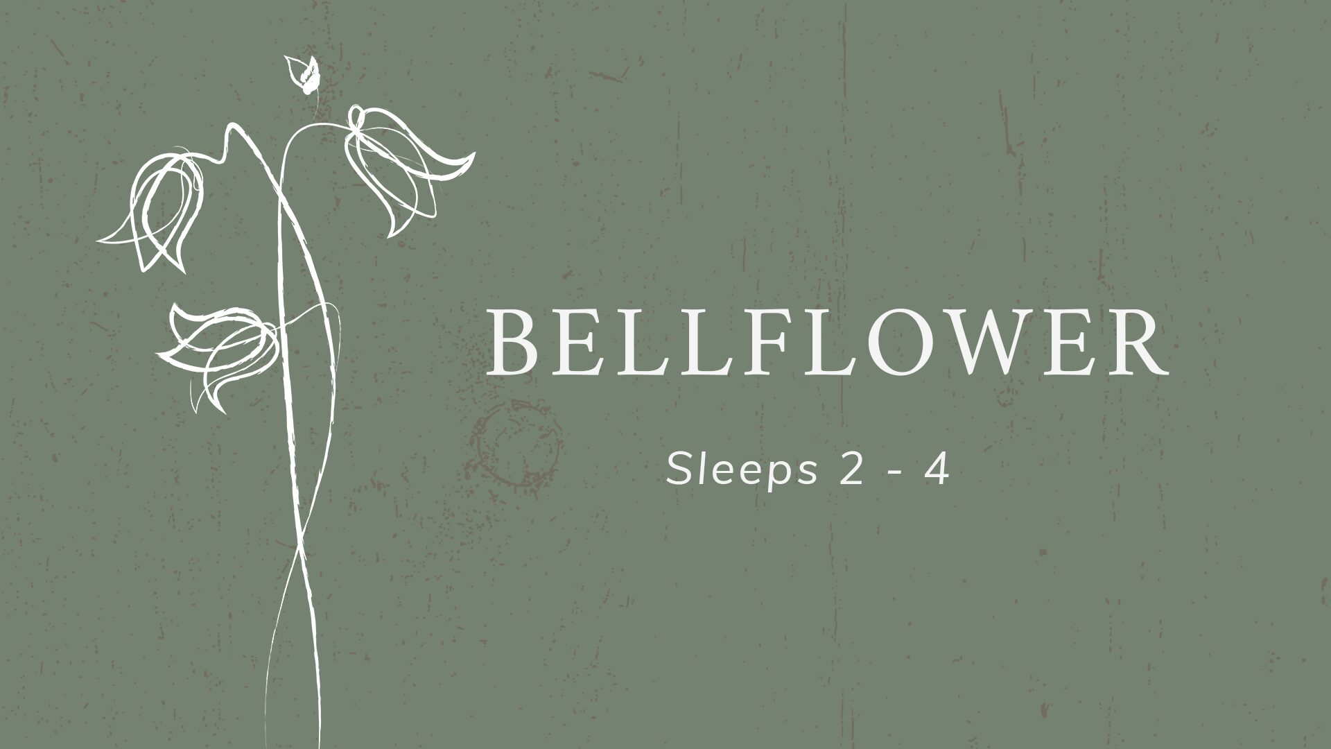 Camp Aramoni Bellflower